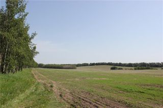 Photo 10: 39103 Highway 20: Sylvan Lake Land for sale : MLS®# C4192272