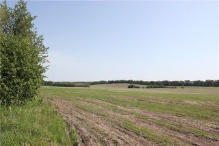 Photo 18: 39103 Highway 20: Sylvan Lake Land for sale : MLS®# C4192272