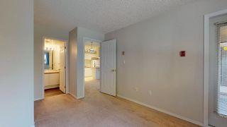 "Photo 14: B102 40120 WILLOW Crescent in Squamish: Garibaldi Estates Condo for sale in ""Diamondhead Place"" : MLS®# R2315280"