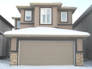 Main Photo: 2815 16 Street in Edmonton: Zone 30 House for sale : MLS®# E4133412