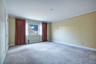Photo 14: 194 W QUEENS Road in North Vancouver: Upper Lonsdale House for sale : MLS®# R2318031