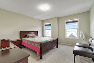 Photo 10: 7919 22 Avenue in Edmonton: Zone 53 House for sale : MLS®# E4137088