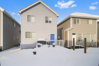 Photo 26: 7919 22 Avenue in Edmonton: Zone 53 House for sale : MLS®# E4137088