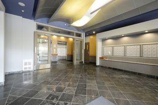 Photo 24: 203 860 View Street in VICTORIA: Vi Downtown Condo Apartment for sale (Victoria)  : MLS®# 405868