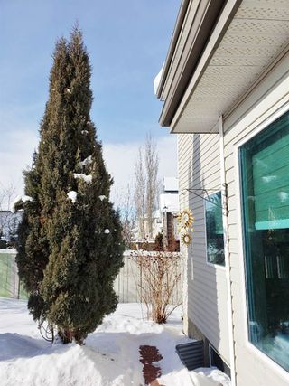 Photo 17: 11807 11 Avenue in Edmonton: Zone 16 House for sale : MLS®# E4145092