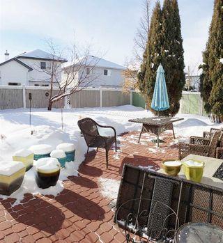 Photo 18: 11807 11 Avenue in Edmonton: Zone 16 House for sale : MLS®# E4145092