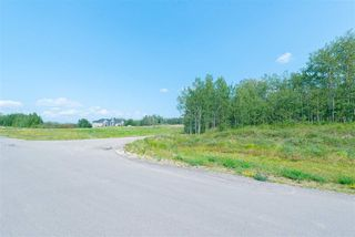 Photo 3: 90, 50535 RR 233: Rural Leduc County Rural Land/Vacant Lot for sale : MLS®# E4155775