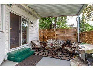 Photo 18: 7535 LAUREL Place: Agassiz House for sale : MLS®# R2371543