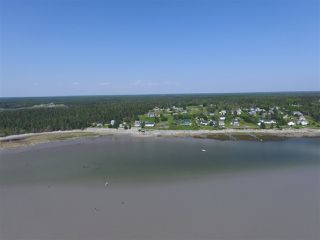 Photo 9: 21 SANDHILLS BEACH EXTENSION Road in Villagedale: 407-Shelburne County Residential for sale (South Shore)  : MLS®# 201914557