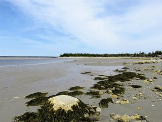 Photo 14: 21 SANDHILLS BEACH EXTENSION Road in Villagedale: 407-Shelburne County Residential for sale (South Shore)  : MLS®# 201914557