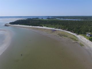 Photo 10: 21 SANDHILLS BEACH EXTENSION Road in Villagedale: 407-Shelburne County Residential for sale (South Shore)  : MLS®# 201914557