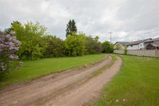 Photo 11: 5203 51A Avenue: Rural Sturgeon County House for sale : MLS®# E4162887