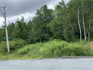 Photo 2: Lot 34 Balsam Street in Beechville: 40-Timberlea, Prospect, St. Margaret`S Bay Vacant Land for sale (Halifax-Dartmouth)  : MLS®# 202013356