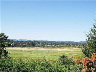 Photo 3: 518 Broadway St in VICTORIA: SW Glanford House for sale (Saanich West)  : MLS®# 583235