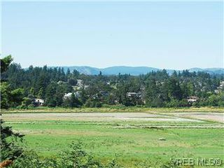 Photo 17: 518 Broadway Street in VICTORIA: SW Glanford Single Family Detached for sale (Saanich West)  : MLS®# 298647