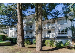 """Photo 16: 104 5577 SMITH Avenue in Burnaby: Central Park BS Condo for sale in """"Cotton Grove in Garden Village"""" (Burnaby South)  : MLS®# V1055670"""