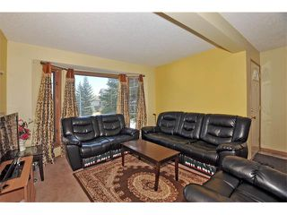 Photo 2: 27 RIVERCREST Circle SE in Calgary: Riverbend House for sale : MLS®# C4006611