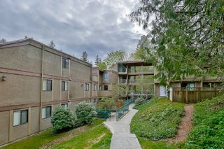 "Photo 1: 301 9126 CAPELLA Drive in Burnaby: Simon Fraser Hills Townhouse for sale in ""MOUNTAINWOOD"" (Burnaby North)  : MLS®# R2055145"