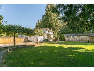 Photo 5: 20618 94B Avenue in Langley: Walnut Grove House for sale : MLS®# R2104373