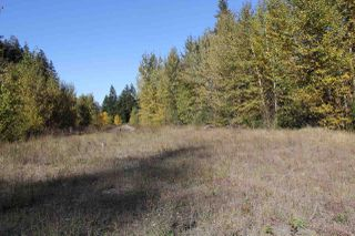 Photo 13: 47000 GREEN RANCH Road in Hope: Boston Bar - Lytton Land for sale : MLS®# R2115550