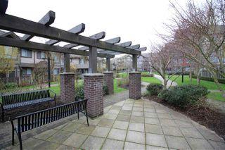 Photo 17: 212 15322 101 Avenue in Surrey: Guildford Condo for sale (North Surrey)  : MLS®# R2121213