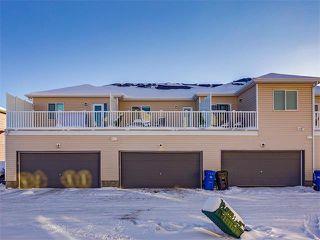 Photo 27: 10706 CITYSCAPE Drive NE in Calgary: Cityscape House for sale : MLS®# C4093905