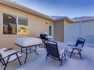 Photo 23: 10706 CITYSCAPE Drive NE in Calgary: Cityscape House for sale : MLS®# C4093905