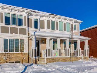 Photo 25: 10706 CITYSCAPE Drive NE in Calgary: Cityscape House for sale : MLS®# C4093905