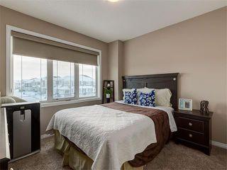 Photo 16: 10706 CITYSCAPE Drive NE in Calgary: Cityscape House for sale : MLS®# C4093905