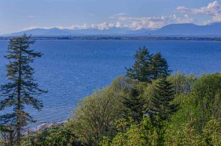 """Photo 10: 2505 CRESCENT Drive in Surrey: Crescent Bch Ocean Pk. House for sale in """"Crescent Beach / Ocean Park"""" (South Surrey White Rock)  : MLS®# R2159169"""