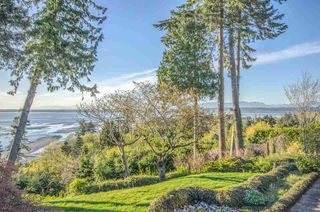"""Photo 6: 2505 CRESCENT Drive in Surrey: Crescent Bch Ocean Pk. House for sale in """"Crescent Beach / Ocean Park"""" (South Surrey White Rock)  : MLS®# R2159169"""