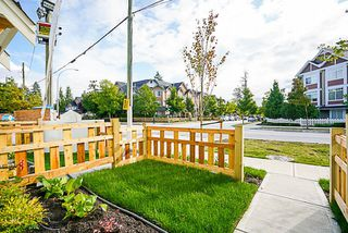 "Photo 9: 6 8699 158 Street in Surrey: Fleetwood Tynehead Townhouse for sale in ""FLEETWOOD PEAK"" : MLS®# R2211833"