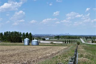 Photo 3: 32025 242 Avenue W: Rural Foothills M.D. Land for sale : MLS®# C4186532