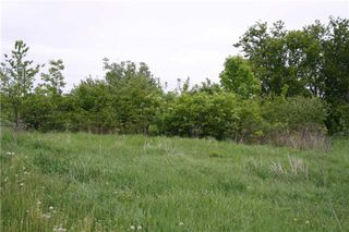 Photo 11: Lot 19 Con 2 in Amaranth: Rural Amaranth Property for sale : MLS®# X4152768