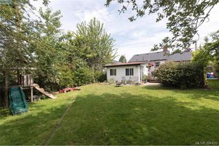 Photo 16: 319 Walter Ave in VICTORIA: SW Gorge Single Family Detached for sale (Saanich West)  : MLS®# 790759
