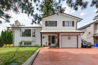 Photo 1: 2883 272 Street in Langley: Aldergrove Langley House for sale : MLS®# R2283966