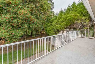 """Photo 18: 7159 116 Street in Delta: Sunshine Hills Woods House for sale in """"Sunshine Hills"""" (N. Delta)  : MLS®# R2306957"""