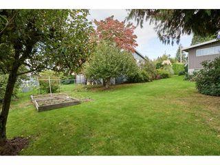 "Photo 20: 9083 112 Street in Delta: Annieville House for sale in ""Annieville"" (N. Delta)  : MLS®# R2309318"