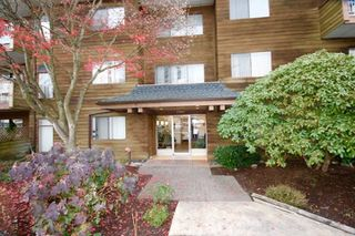 "Photo 9: 104 11957 223 Street in Maple Ridge: West Central Condo for sale in ""Alouette Apartments"" : MLS®# R2323481"
