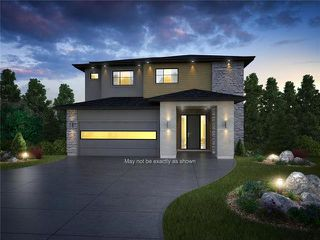 Main Photo: 20 Elm Forest Court in Winnipeg: Bridgwater Trails Residential for sale (1R)  : MLS®# 1830960