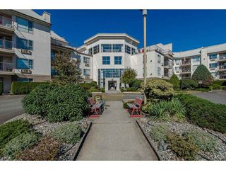 """Main Photo: 117 2626 COUNTESS Street in Abbotsford: Abbotsford West Condo for sale in """"The Wedgewood"""" : MLS®# R2344730"""