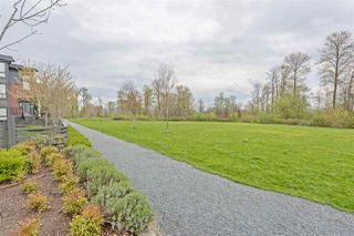 "Photo 19: 19 2310 RANGER Lane in Port Coquitlam: Riverwood Townhouse for sale in ""FREMONT BLUE BY MOSAIC"" : MLS®# R2360116"