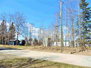 Photo 10: 5035 Crestview Drive: Rural Lac Ste. Anne County Rural Land/Vacant Lot for sale : MLS®# E4156310