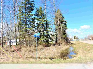 Photo 13: 5035 Crestview Drive: Rural Lac Ste. Anne County Rural Land/Vacant Lot for sale : MLS®# E4156310