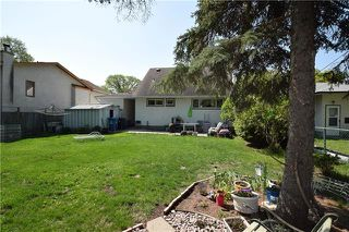 Photo 6: 233 BRUCE Avenue in Winnipeg: Silver Heights Residential for sale (5F)  : MLS®# 1913985