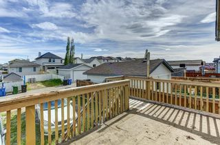 Photo 29: 243 TARACOVE ESTATE Drive NE in Calgary: Taradale Detached for sale : MLS®# C4303627