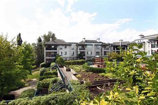 "Photo 21: 335 19528 FRASER Highway in Surrey: Cloverdale BC Condo for sale in ""THE FAIRMONT"" (Cloverdale)  : MLS®# R2469719"