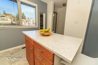 Photo 13: 7315 181 Street in Edmonton: Zone 20 House for sale : MLS®# E4217669