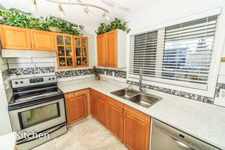 Photo 8: 7315 181 Street in Edmonton: Zone 20 House for sale : MLS®# E4217669