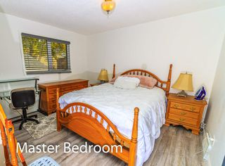 Photo 22: 7315 181 Street in Edmonton: Zone 20 House for sale : MLS®# E4217669